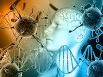 fondo médico 3D con la cabeza masculina, cerebro con las células del virus y Imagenes de archivo