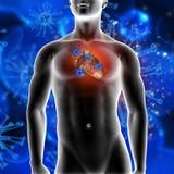 fondo médico 3D que muestra las células del virus que atacan un corazón Imagen de archivo