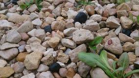 Fondo mínimo de las piedras Imagen de archivo