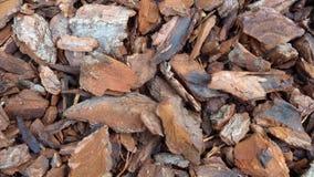 Fondo machacado de la corteza de árbol Corteza de árbol destrozada para las texturas foto de archivo