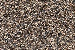 Fondo machacado de la pimienta negra (nigrum del gaitero). imagenes de archivo