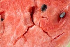 Fondo macro de la textura de la sandía del primer maduro de la carne Foto de archivo libre de regalías