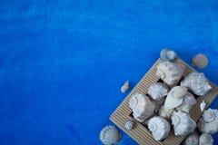 Fondo marina Copyspace Foto de archivo