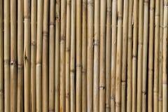Fondo marrón claro del palillo Fotografía de archivo libre de regalías