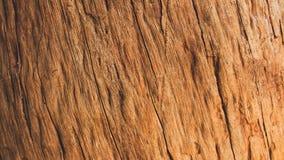Fondo marrón del color de la madera dura Foto de archivo libre de regalías