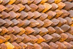 Fondo marrone delle noci di cocco di fila Fotografia Stock Libera da Diritti