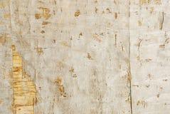 Fondo marrone e verde della plancia di legno di struttura Fotografie Stock