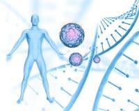 fondo medico 3D con maschio dipendere i fili del DNA ed il fondo delle cellule del virus royalty illustrazione gratis