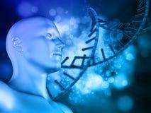 fondo medico del DNA 3D con la figura maschio ed il filo del DNA Fotografie Stock