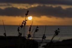 Fondo Mediterraneo di alba fotografie stock libere da diritti