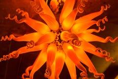 Fondo melancólico de la lámpara del estilo de la flor Fotos de archivo