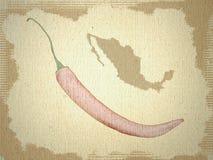 Fondo Messico e pepe Immagine Stock Libera da Diritti