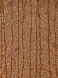 Fondo, metal, acero, textura, beige, marrón, rayas Fotografía de archivo libre de regalías