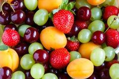 Fondo misto di frutta fresca Spazio della copia e del fuoco selettivo Fotografia Stock