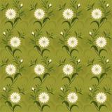 Fondo/modello con i fiori Fotografia Stock