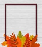 Fondo moderno de la plantilla para la página web con el marco, las hojas y la madera Etiqueta de la plantilla Diseño para los med libre illustration