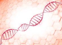 Fondo molecolare dell'elica del DNA Fotografie Stock