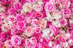 Fondo molle delle rose di colori Fotografie Stock Libere da Diritti