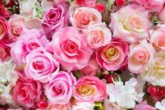 Fondo molle delle rose di colori Immagine Stock Libera da Diritti