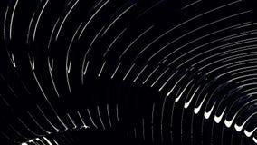 Fondo monocromático gráfico de líneas que fluyen en el movimiento de ondas dinámico, blanco en negro animaci?n Rayas estrechas bl stock de ilustración