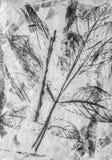 Fondo monocromatico delle foglie di autunno di arte nel bianco, nel nero e nel grey Fotografia Stock Libera da Diritti