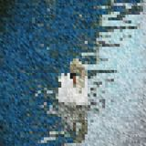 Fondo-mosaico-bianco-Cigno-su-acqua illustrazione vettoriale