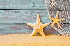 Fondo náutico con las estrellas de mar Foto de archivo