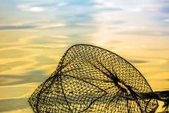 Fondo nacional Beautyful de los pescados del agua neta del amarillo Fotografía de archivo libre de regalías
