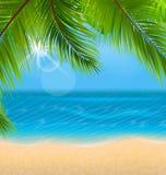 Fondo natural con las hojas de palma y la playa stock de ilustración