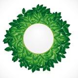 Fondo natural con las hojas verdes stock de ilustración