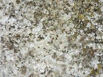 Fondo natural de la textura de la piedra Imagen de archivo libre de regalías