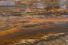 Fondo natural de las aguas termales de Yellowstone Imagen de archivo