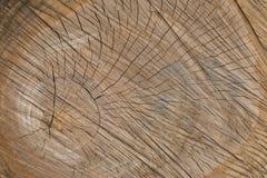 Fondo natural de madera para el diseño, la bandera y la disposición fotografía de archivo libre de regalías