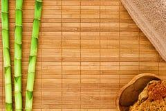 Fondo natural del balneario con los vástagos de bambú Fotos de archivo libres de regalías