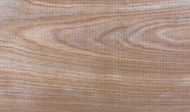 Fondo natural del modelo de la textura del grano de madera de abedul de Taiga Fotografía de archivo libre de regalías