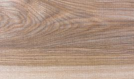 Fondo natural del modelo de la textura del grano de madera de abedul de Taiga Fotos de archivo libres de regalías