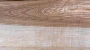 Fondo natural del modelo de la textura del grano de madera de abedul de Taiga Imagenes de archivo