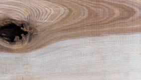 Fondo natural del modelo de la textura del grano de madera de abedul de Taiga Fotografía de archivo