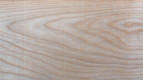 Fondo natural del modelo de la textura del grano de madera de abedul de Taiga Imágenes de archivo libres de regalías