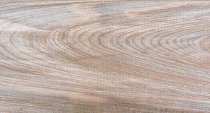 Fondo natural del modelo de la textura del grano de madera de abedul de Taiga Foto de archivo