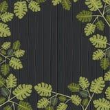 Fondo natural del modelo de las hojas Imágenes de archivo libres de regalías