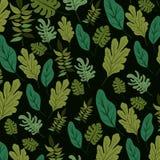 Fondo natural del modelo de las hojas Foto de archivo
