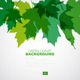 Fondo natural Fondo del vector con verde Foto de archivo
