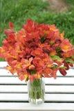 Fondo natural hermoso anaranjado rojo de Alstromeria Lily Flower Bouquet Green Grass entonado tiempo de verano de la primavera Fotos de archivo
