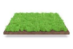 fondo naturale dell'erba isolato 3D Fotografia Stock Libera da Diritti