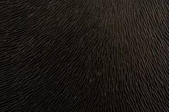 Fondo negro con una pequeña figura Imagenes de archivo