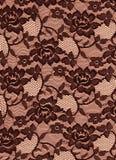 Fondo negro de la tela de las rosas del cordón de Brown Foto de archivo libre de regalías