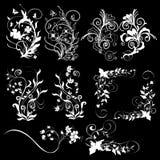 Fondo negro de los elementos del diseño floral Imagen de archivo libre de regalías