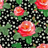 Fondo negro de rosas y de Circles-01 Foto de archivo