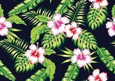 Fondo negro inconsútil de las flores de las plantas tropicales y del hibisco libre illustration